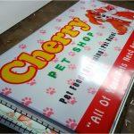 Neon Box pet shop murah di Bantul